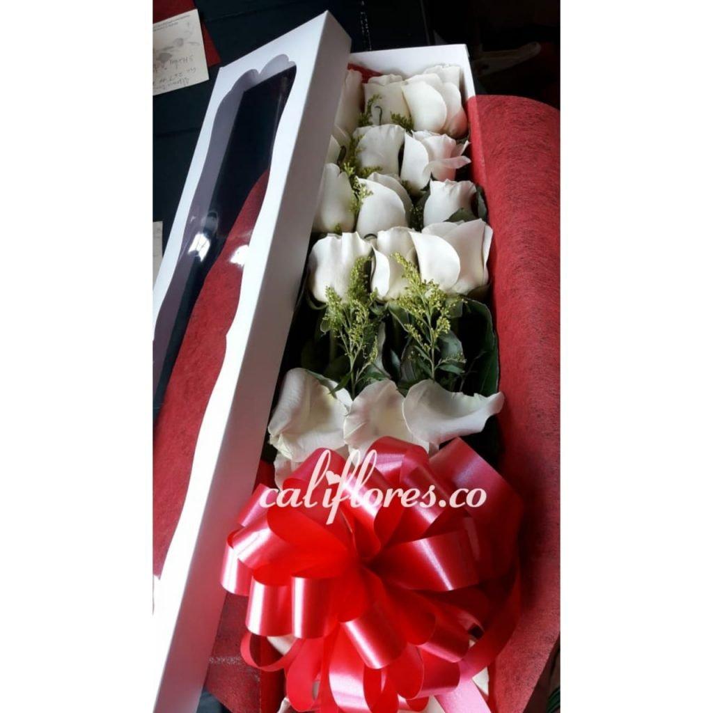 Rosas Blancas Floristeria Cali