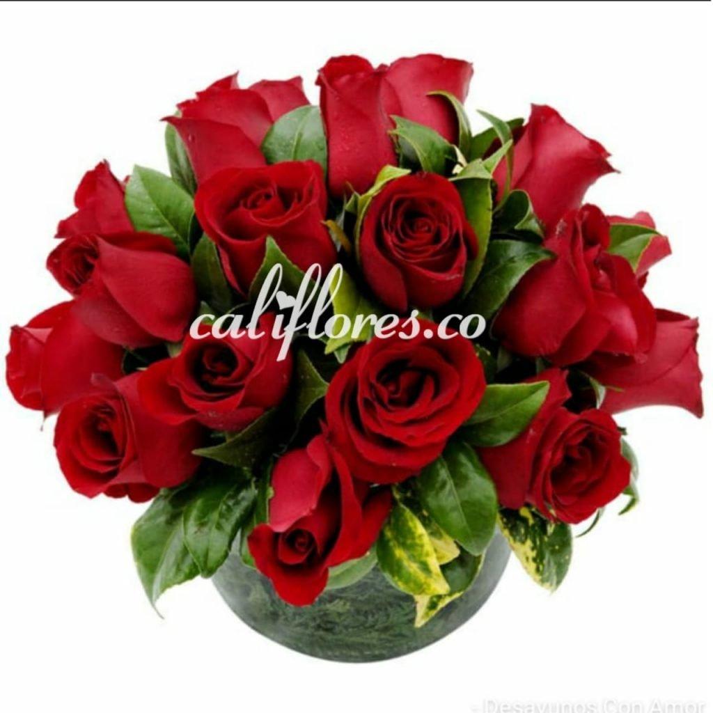 Aniversario Floristeria