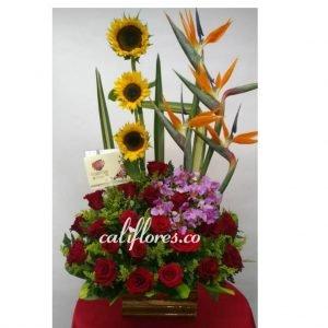 Orquídeas Hawaianas - Se compone de Arreglo rosas rojas ,aves ,girasoles y orquídeas hawaianas Para mas información: Celular:(+57) 316 705 28 09