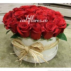 Cubo Redondo Rosas Rojas - Se compone de Cubo redondo rosas rojas Para mas información: Celular:(+57) 316 705 28 09
